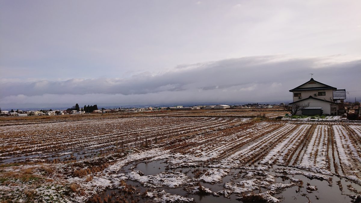 坂下でも初雪